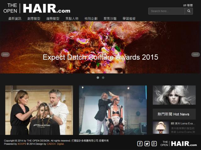 THE OPEN HAIR電腦版網頁畫面